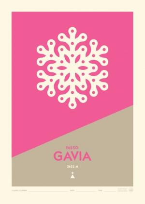 Poster Passo Gavia